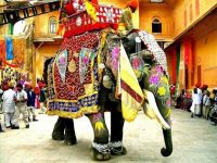 indiya012 Индия - г. Сургут, Турагентство АстраТур Клуб