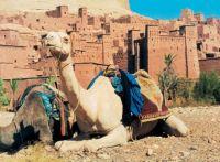 phoca_thumb_l_marokko04 Марокко - г. Сургут, Турагентство АстраТур Клуб
